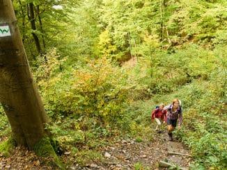 Naturpfad Weltende Westerwald