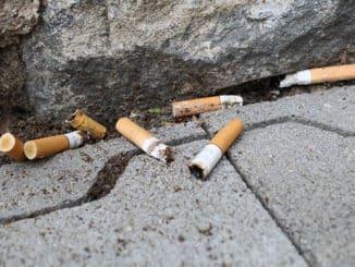 So gefährlich sind Zigarettenstummel