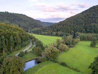Waldbaden im Wiedtal - Komm mal runter-678
