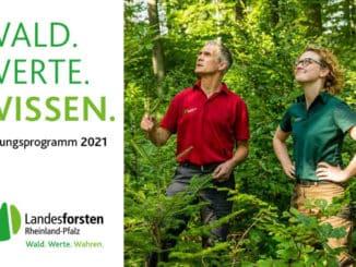Wald. Werte. Wissen. - Bildungsprogramm der Landesforsten Rheinland-Pfalz 2021